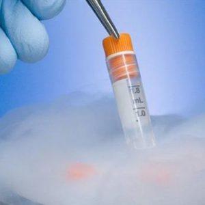 14 Yıllık Donmuş Embriyodan Bir Bebek Dünyaya Geldi