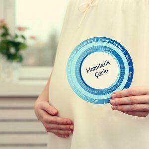 Kaç Haftalık Hamileyim? Gebelik Haftası Hesaplama